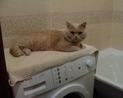 Капитальный ремонт стиральных машин в Харькове.